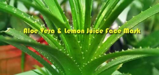 aloe-vera-lemon-juice-face-mask