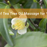 Wonders-of-Tea-Tree-Oil-Massage-for-Your-Skin